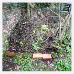 compost heap  - Photo P Perry 2012